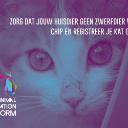 Wereld Zwerfdierendag 2019